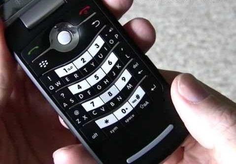 BlackBerry Pearl Flip 8220 - Omega Gadget 7