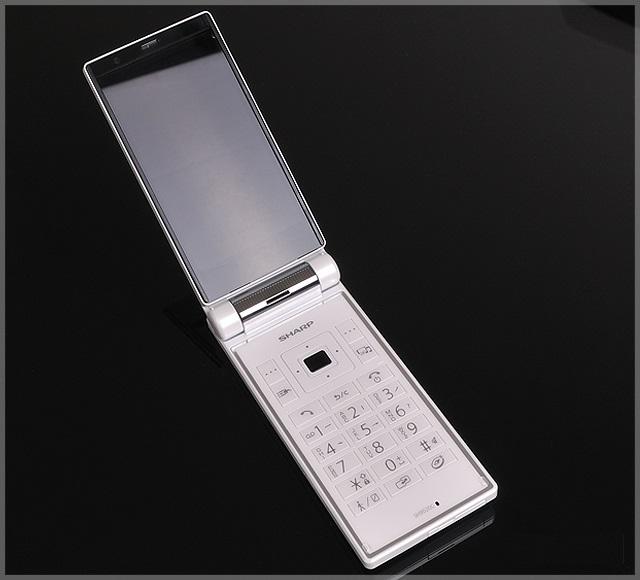 Sharp sh9020c - Omega Gadget 10